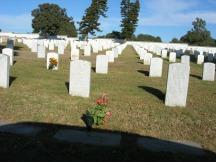 November 21 175