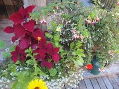 Deck Garden 5