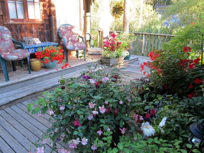 Deck Garden 3