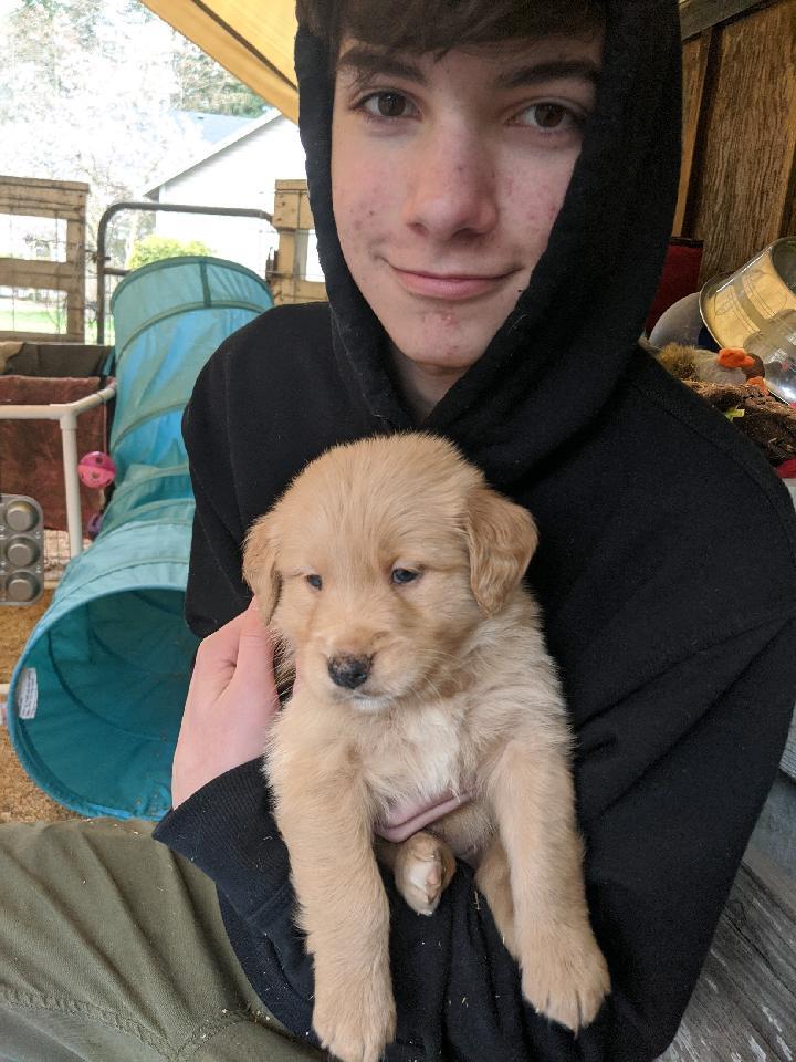 Puppy-Luca